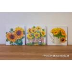 Obrazy bez rámu-séria slnečnice